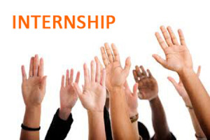 campaign pictures_internship